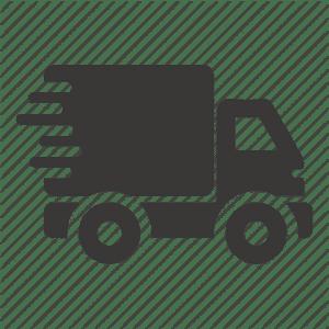 ikona za brzu dostavu